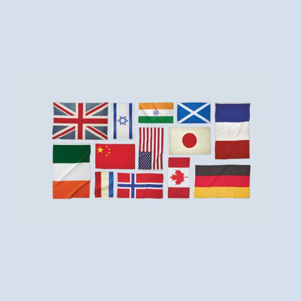 assorted international flags